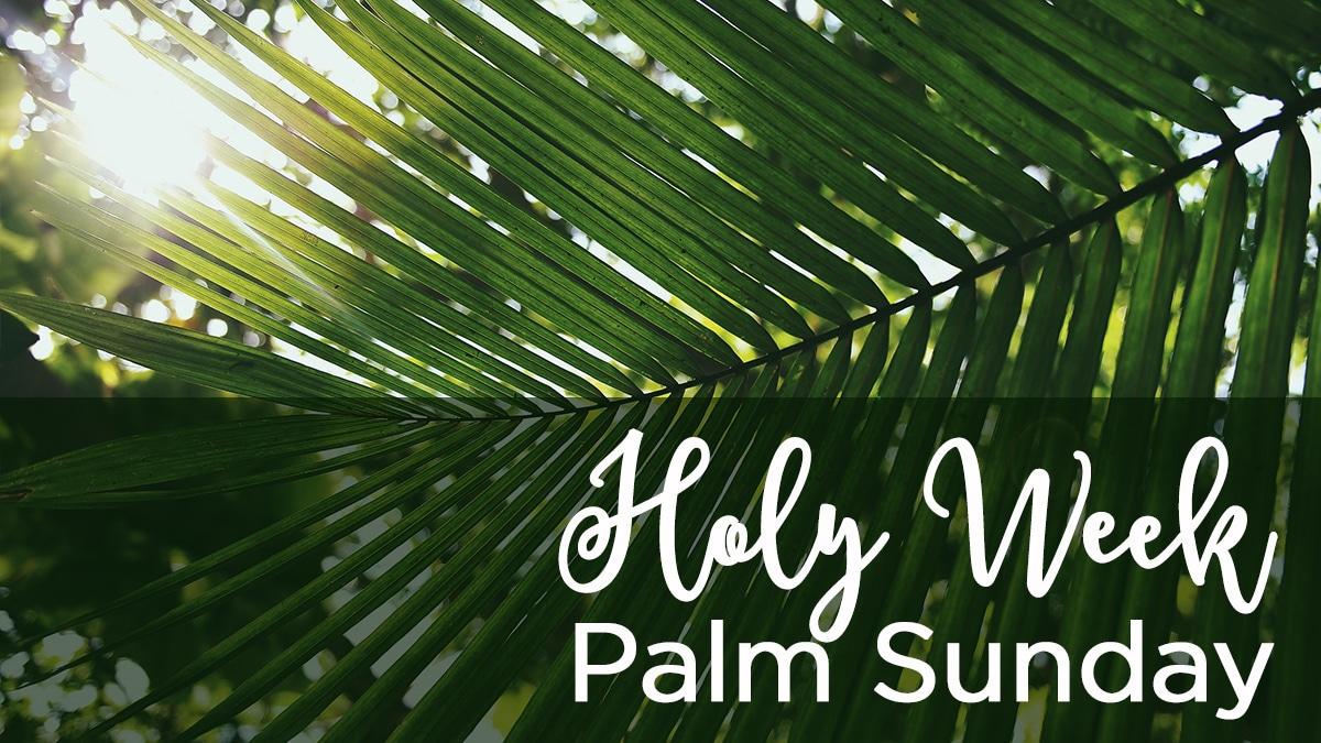 Praise Sunday